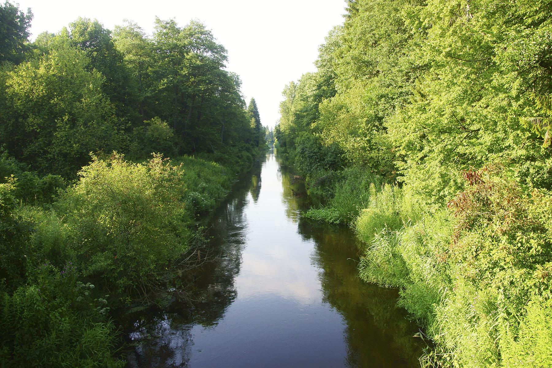 Najstarszy kanał mazurski – zbudowany w 1733 r. Kanał Brożajcki płynie w całości przez Lasy Skaliskie