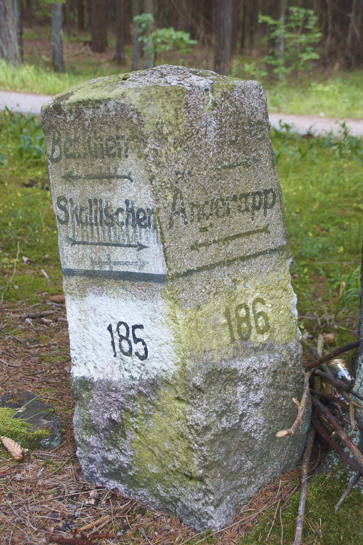 Stary, kamienny drogowskaz w Lasach Skaliskich