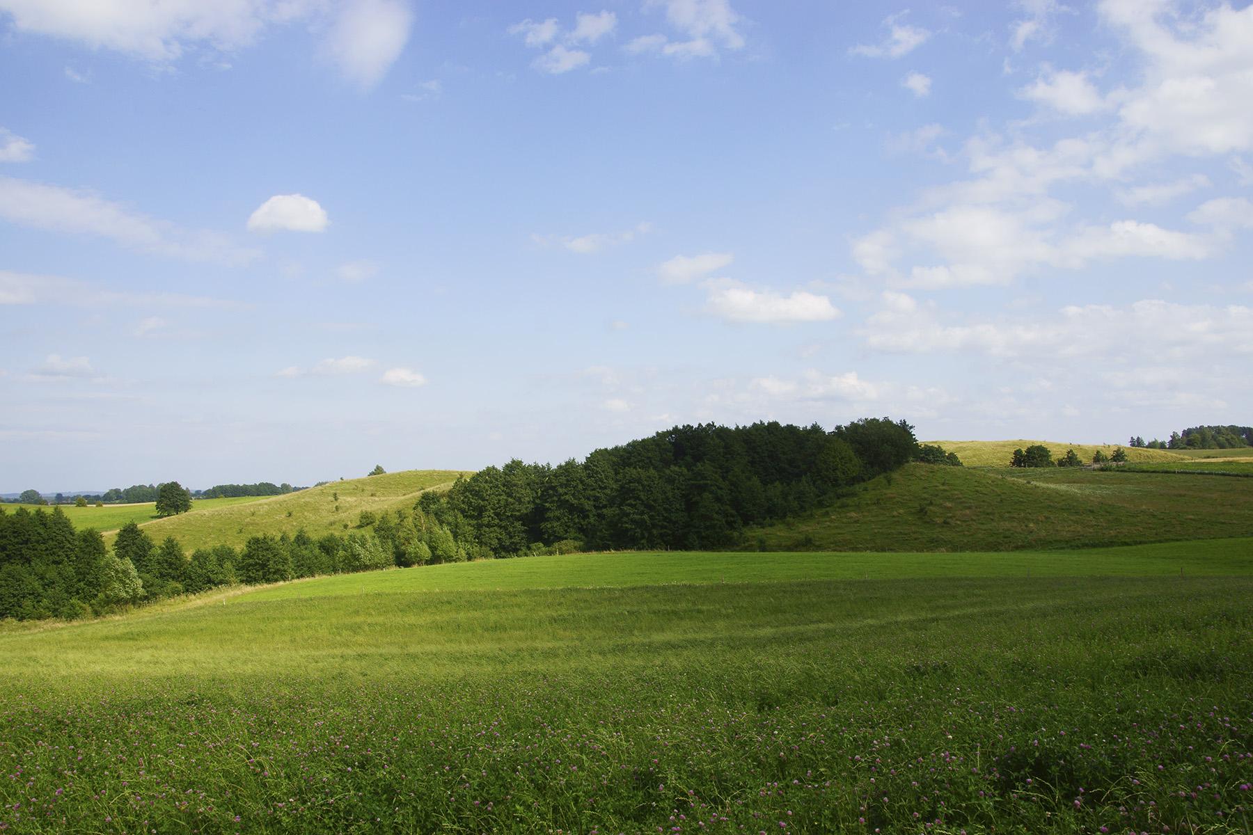 Niemal beskidzkie krajobrazy Wzgórz Dowiackich