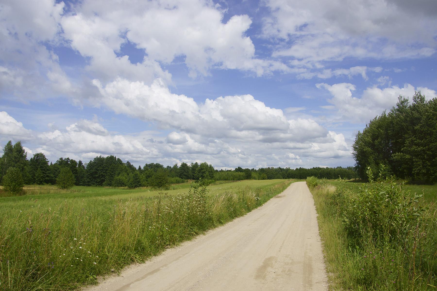 Polna droga wzdłuż biegu Węgorapy w Wężówku