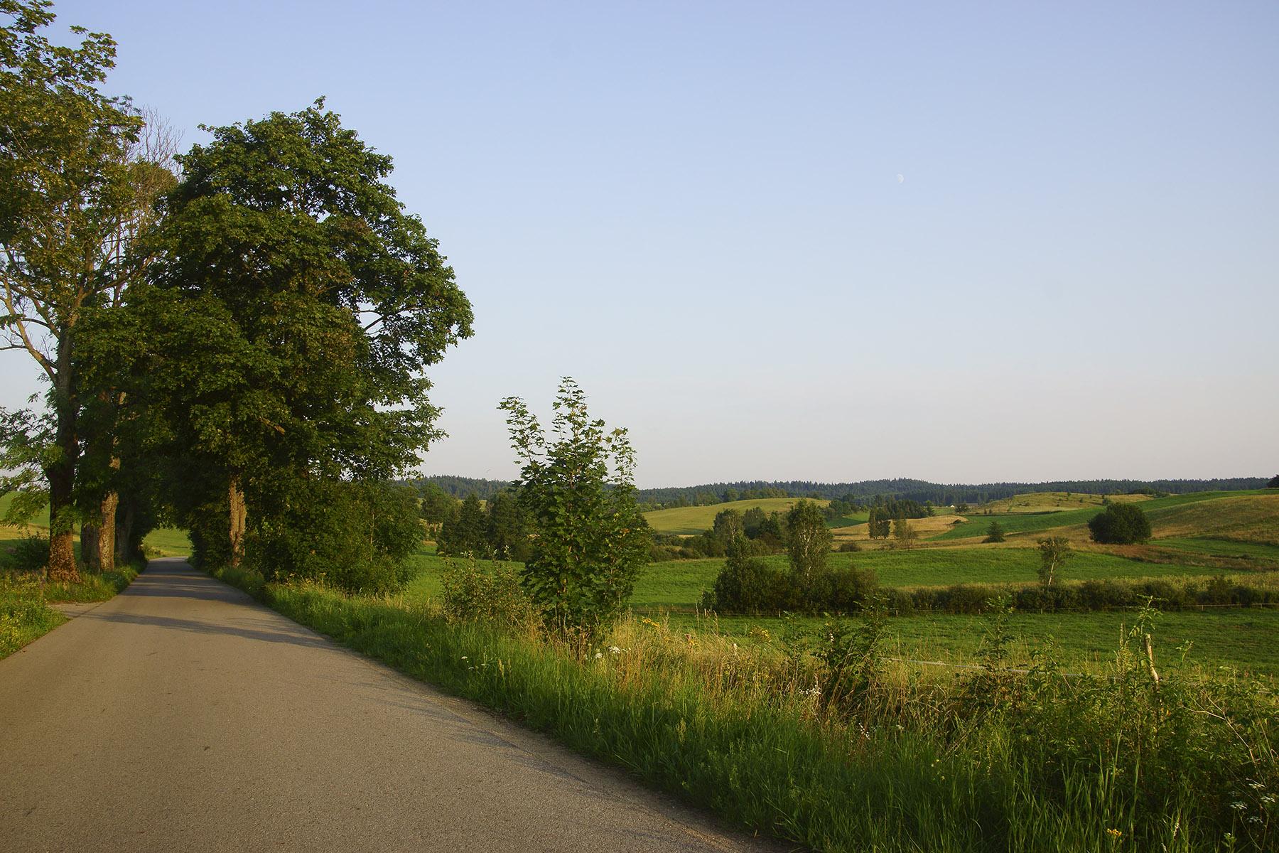 Widok z szosy za Piłakami Małymi w kierunku pasma Wzgórz Piłackich